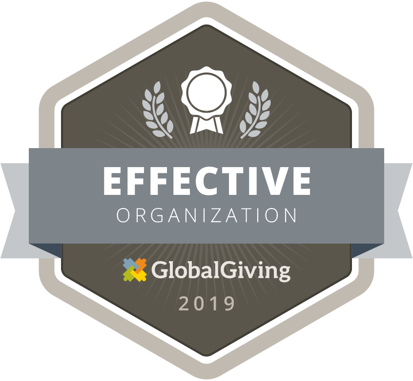GlobalGiving Effective Organization 2019